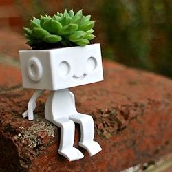 Robot végétal
