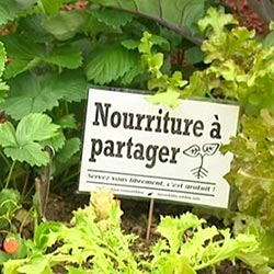Transformons nos territoires en immenses potagers !