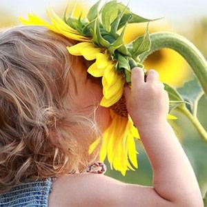 Jeudi d'été #6 : Contes olfactifs